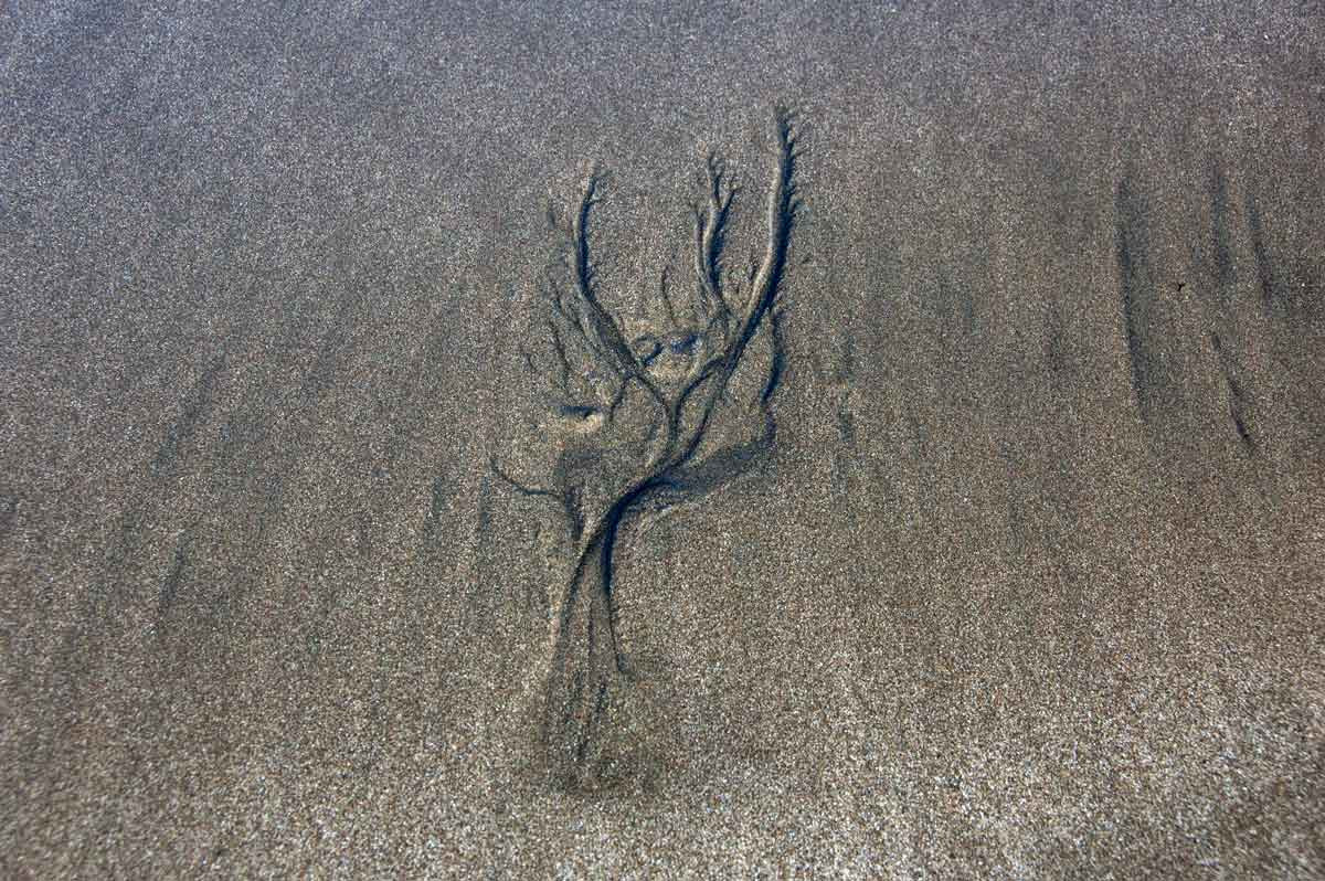 Sand_1002