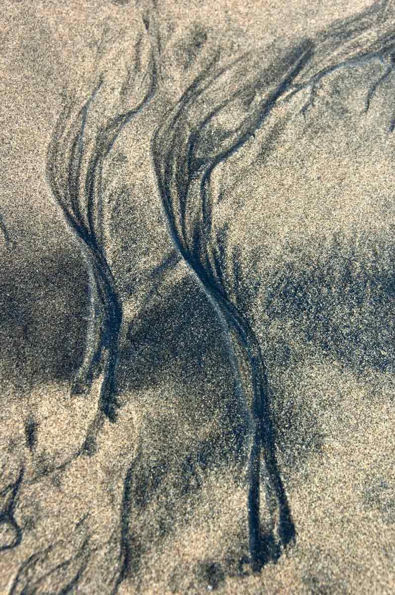 Sand_1017
