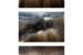 Sand_1056
