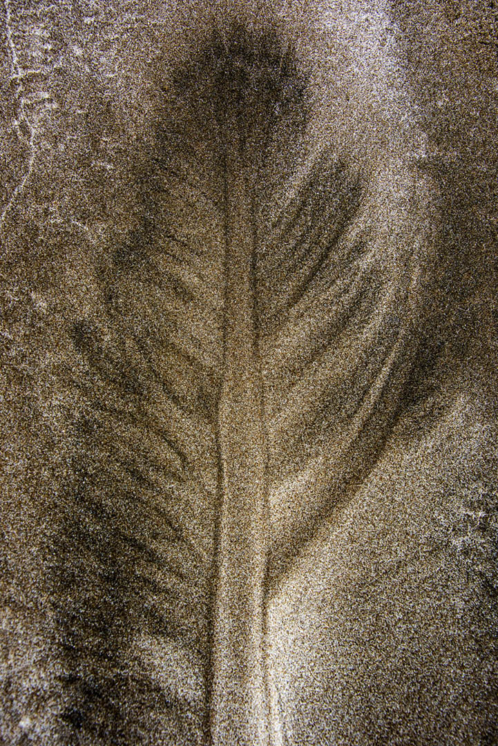 Sand_1061