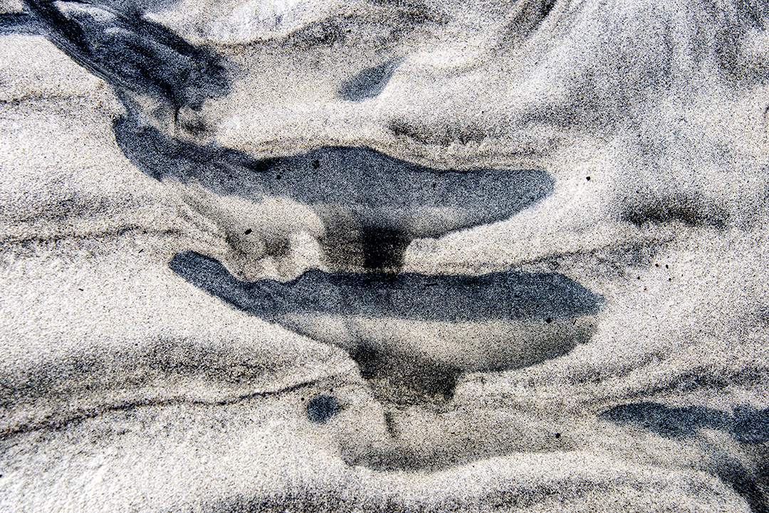 Sand_1091