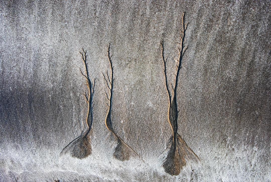 Sand_1093