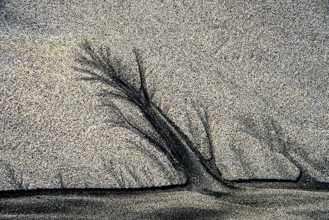 Sand_1103