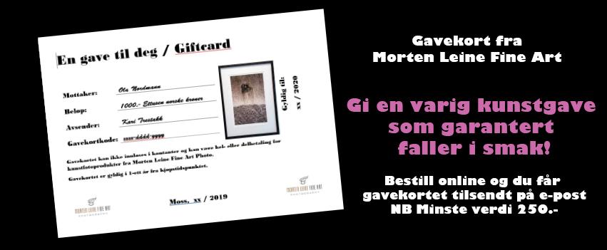Kunst-gavekort