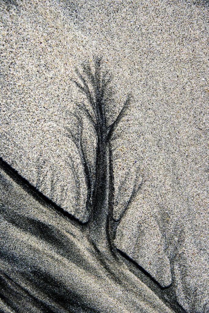 Sand-art from Lofoten